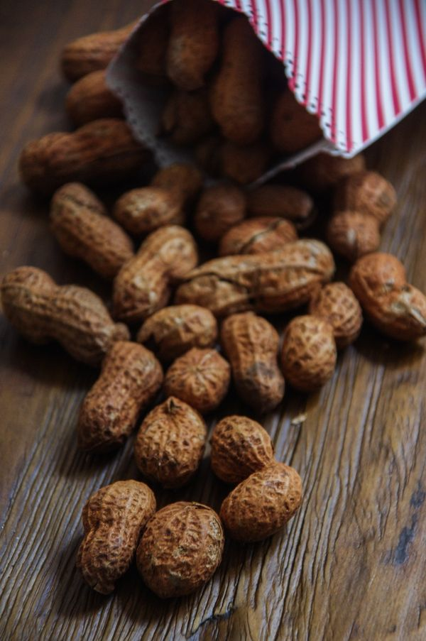 The Wonderful Wizard of Oz/ Oz The Great and Powerful; Hot Roasted Peanuts