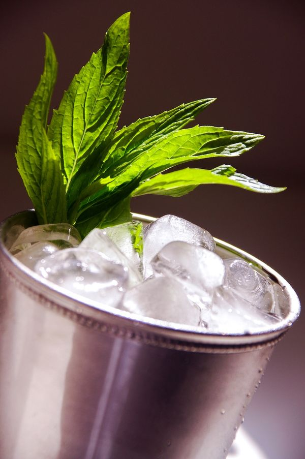 The Great Gatsby; Mint Julep