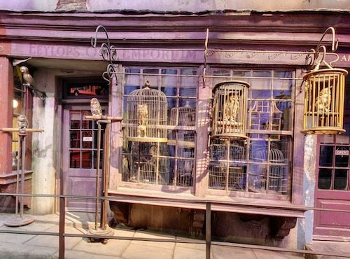 Diagon Alley Eeylops Owl Emporium