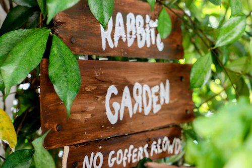 Rabbit's Garden No gophers allowed signage via BrytonTaylor.com