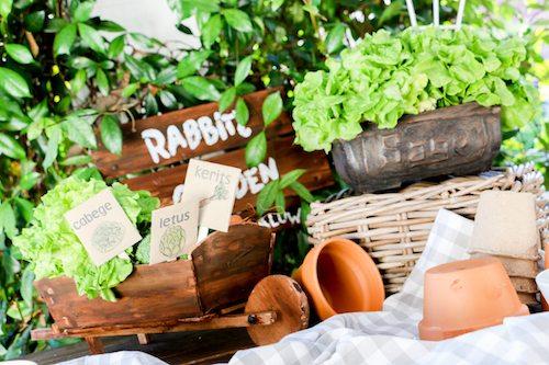 rabbits-garden-bryton-taylor-24
