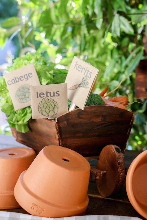 Rabbit's Garden terracotta pots