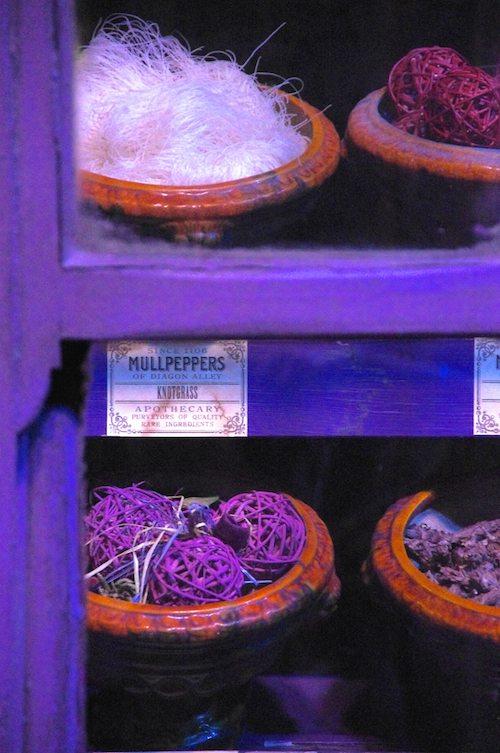 Mullpeppers Knotgrass