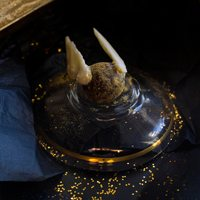 golden snitch harry potter recipe