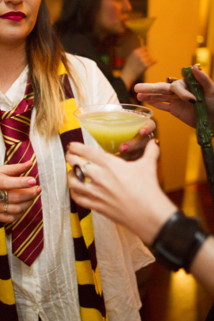 Harry Potter Party - 028