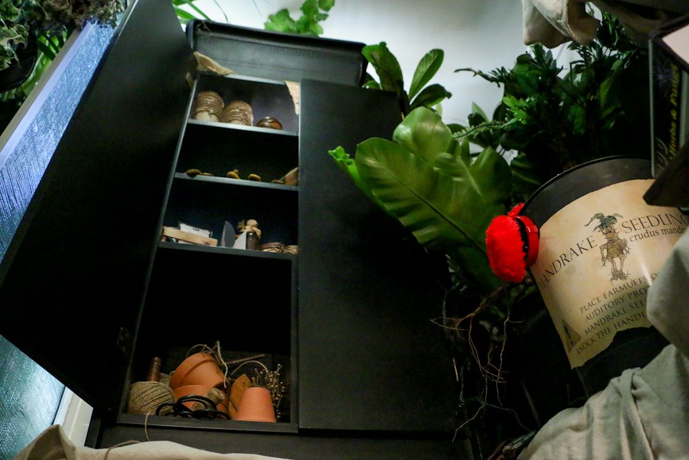 harry potter hogwarts dinner party- herbology cabinet