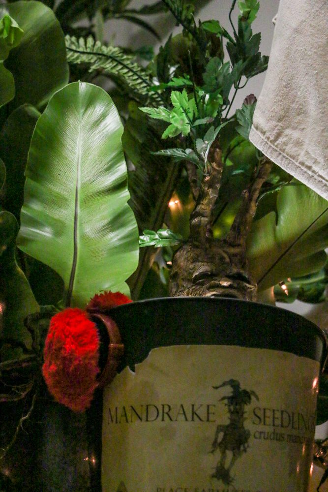 harry potter hogwarts dinner party-mandrake