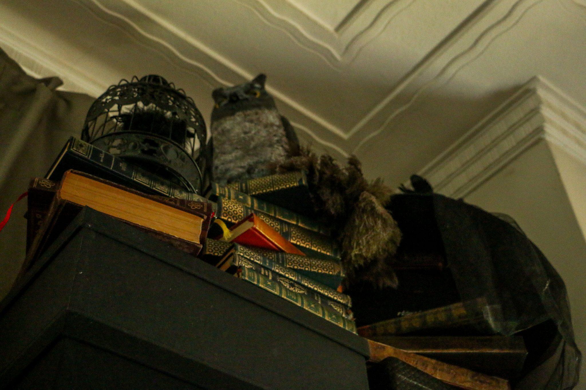 harry potter hogwarts dinner party-12