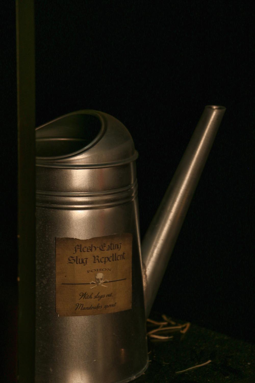 harry potter hogwarts dinner party-flesh eating slug repellent