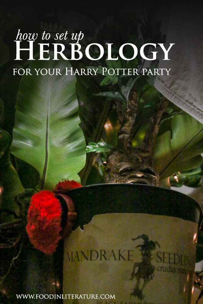 With just a few ideas, you'll have 'Herbology' set up for your Harry Potter party i no time!